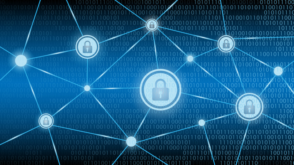 Read more about the article Federal Cybersecurity Programs